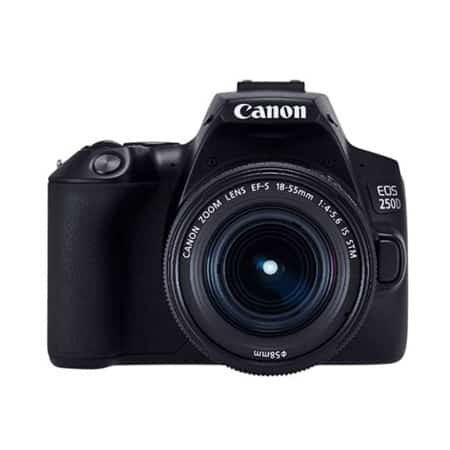 Canon EOS 250D + EF-S 18-55 IS STM